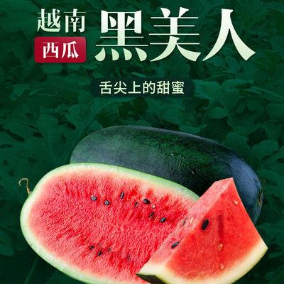 特甜黑美人西瓜应季新鲜水果包邮应当季薄皮进口大西瓜甜西瓜整箱