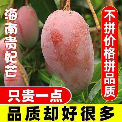 【精品10斤】海南贵妃芒果甜心芒果应季新鲜水果红金龙整箱批发