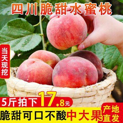 新鲜现摘水蜜桃子毛桃脆桃非油桃黄桃应当季孕妇水果整箱批发3/5