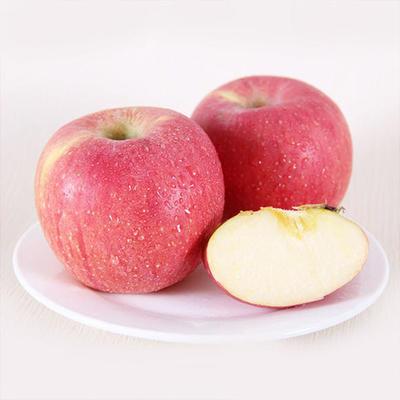 正宗大沙河红富士苹果整箱包邮产地果园直销