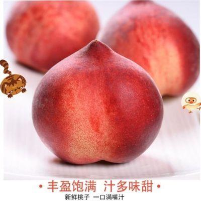 现摘桃子新鲜毛桃应当季整箱脆甜毛桃孕妇水果当季红蜜桃
