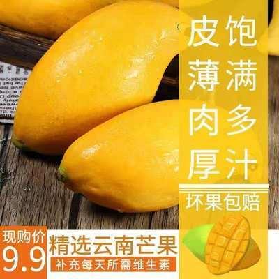 小台芒金煌芒果水果新鲜当季整箱特大芒果云南芒果大芒果香甜包邮