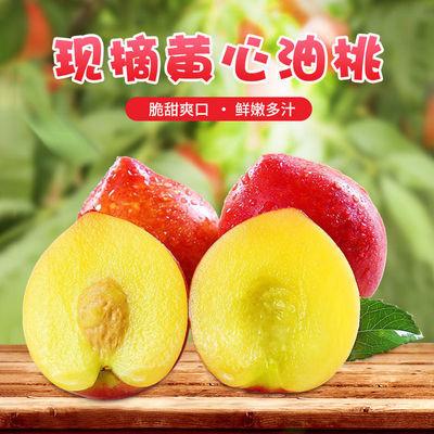 【现货速发】脆甜黄心油桃5/3斤单果90g新鲜当季黄肉大油桃整箱