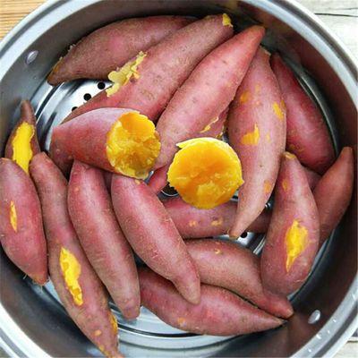 新鲜红薯沙地番薯香薯超甜小蜜薯板栗薯山芋地瓜批发3斤