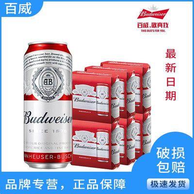 37204/百威啤酒500ml经典醇正500ml*5听啤酒整箱批发罐装啤酒特价18听