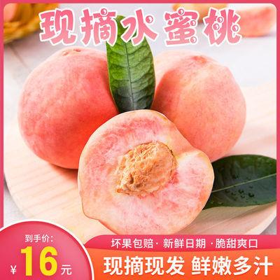【现货速发】现摘桃子新鲜毛桃脆甜多汁当季水果脆桃子