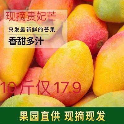 现摘贵妃芒新鲜水果当季芒果小红金龙应季热带水果金凤凰包邮海南