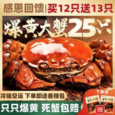洪泽湖满黄大闸蟹鲜活特大螃蟹冷链产地现货1-4两苏州公母蟹批发