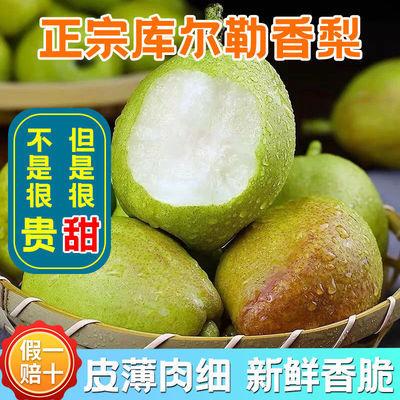 正宗新疆库尔勒香梨汁多脆甜梨子皮薄肉细新鲜水果3/5/8斤中大果