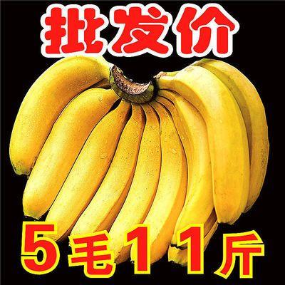 【超甜糯】云南大香蕉当季新鲜水果薄皮自然熟3/5/10斤一整箱批发