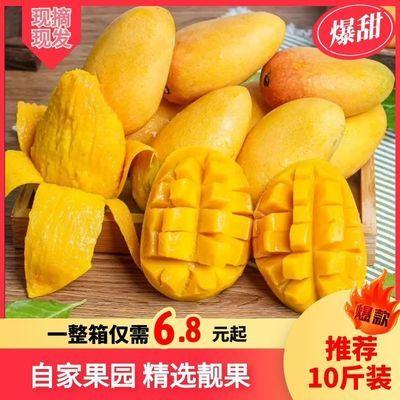 爆甜 小台芒小台农芒果新鲜应季热带孕妇水果整箱批发包邮/5/10斤