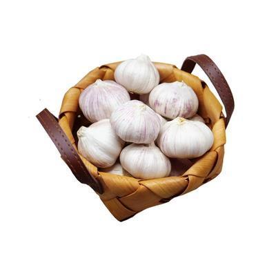 紫皮大蒜2021新干大蒜头5斤非独头紫红皮大蒜种籽干蒜10斤装