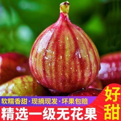 【树上熟特级大果】5斤红皮无花果新鲜水果当季整箱包邮非青皮1斤