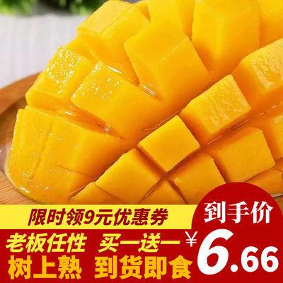 37786/【树上熟】云南非海南台芒 整箱水果 当季水果 应季水果 到货即食