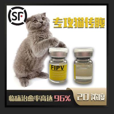猫传腹水剂441传染性腹膜炎441针剂营养抑制剂黄疸针口服片