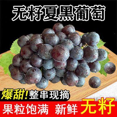 夏黑无籽葡萄水果新鲜应季水果孕妇水果2斤3斤4斤6斤装整串现摘