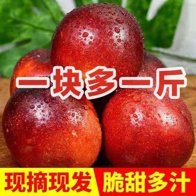 黄心油桃新鲜黄肉油桃应季水果孕妇水果新鲜脆甜硬油桃整箱批发价