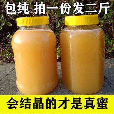 39005/天然野生蜂蜜正宗土蜂蜜纯真百花蜜农家自产自销枣花蜜一斤装批发