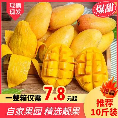 新鲜爆甜台芒当季热带芒果非贵妃金煌芒带箱批发包邮3/5/10斤