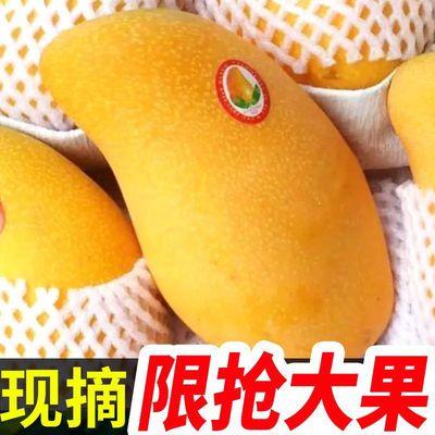 40121/【自然熟】芒果新鲜水果1-10斤装整箱批发大芒果非贵妃芒大青芒