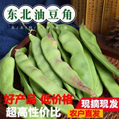 【优选好货】东北油豆角一点红开锅烂新鲜扁豆四季豆角面芸豆批发