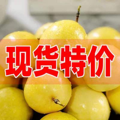【现货】福建黄金百香果当季新鲜水果鸡蛋果黄色百果香果整箱批发