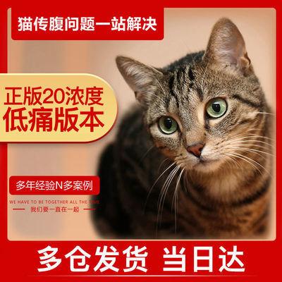 猫传腹药fipv441针剂针水口服片猫腹膜炎抑制剂消腹水干湿
