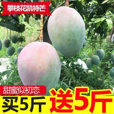 57861/【现货】攀枝花凯特芒果10斤应当季新鲜水果四川特大青皮芒果整箱