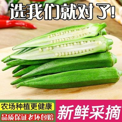 【限时抢购】新鲜秋葵蔬菜水果秋葵新鲜现摘现发鲜嫩到家农场批发