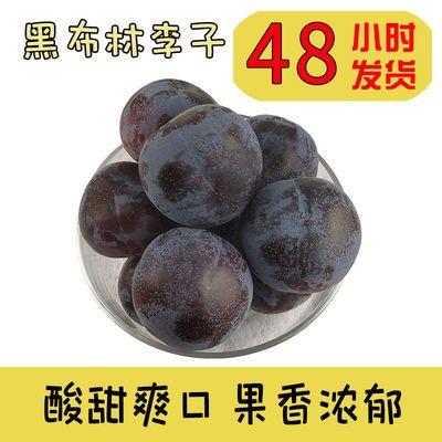 陕西新鲜黑布林大李子水果孕妇水果酸新鲜现摘黑布朗黑巨李包邮