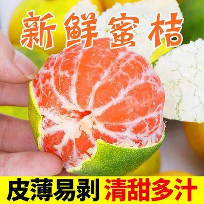 现摘现发云南青皮橘子新鲜应季孕妇水果蜜桔子酸甜整箱批发包邮【7月14日发完】