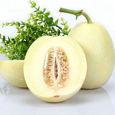 陕西阎良甜瓜3斤装当季新鲜水果白甜瓜香瓜整箱批发包邮多仓发货