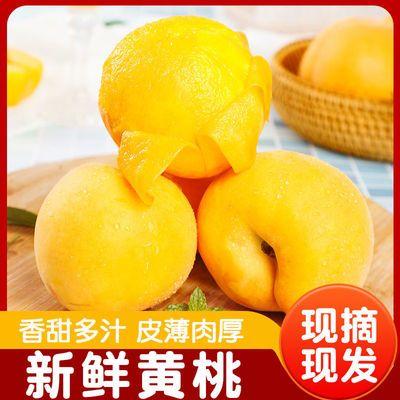 蒙阴山地大黄桃现摘现发当季黄毛桃新鲜孕妇水果脆甜桃子整箱包邮