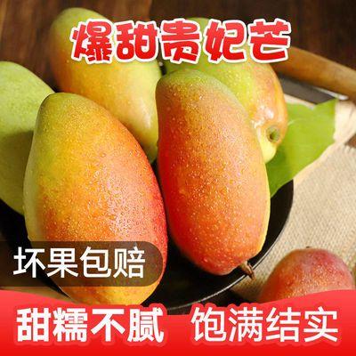 贵妃芒果新鲜水果红金龙小贵妃芒当季水果整箱