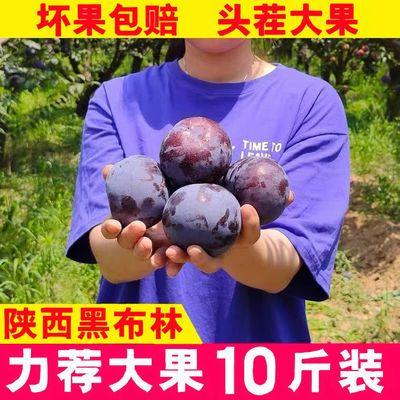 陕西黑布林大李子10斤3斤水果脆李子脆甜新鲜 应季水果酸甜李子