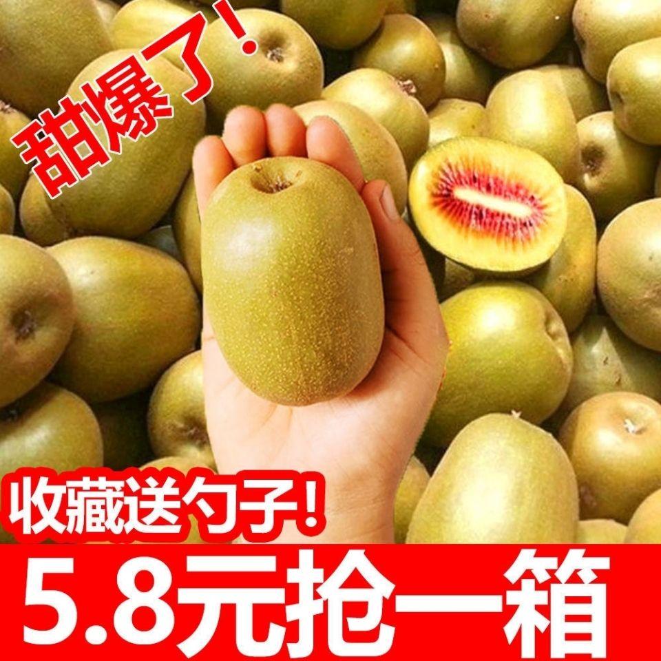 四川蒲江红心猕猴桃新鲜包邮奇异果大果水果当季整箱泥猴桃弥核桃