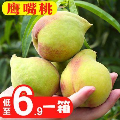 蒙自鹰嘴桃子水蜜桃当季时令水果整箱包邮脆甜多汁非连平河源桃子