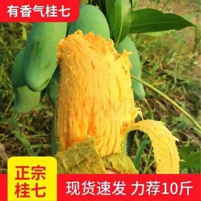【广西百色】田东正宗桂七芒果香芒青芒当季新鲜水果3/5/9包邮