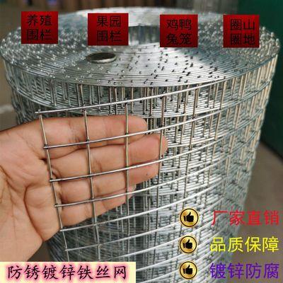镀锌铁丝网围栏防锈铁网防鼠网钢丝隔离网菜园拦鸡网圈地网玉米网