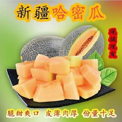 现摘新疆哈密瓜爆甜当季新鲜水果批发香瓜网纹蜜瓜西州蜜整箱批发
