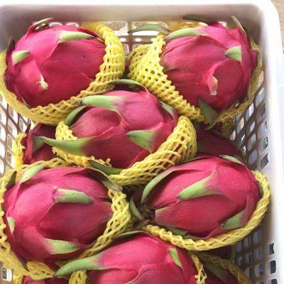 红心火龙果当季新鲜水果孕妇小孩金都一号火龙果整箱包邮2/3/5斤