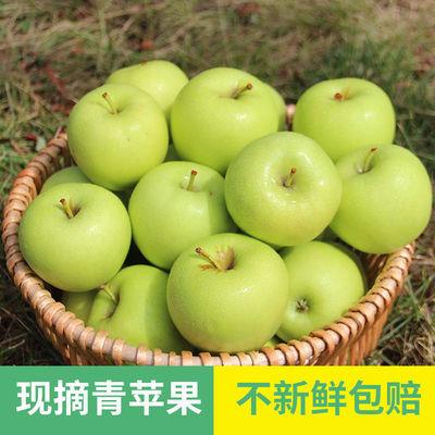 青苹果酸脆孕妇水果3/5/10斤酸甜青苹果水果当季新鲜青苹果批发
