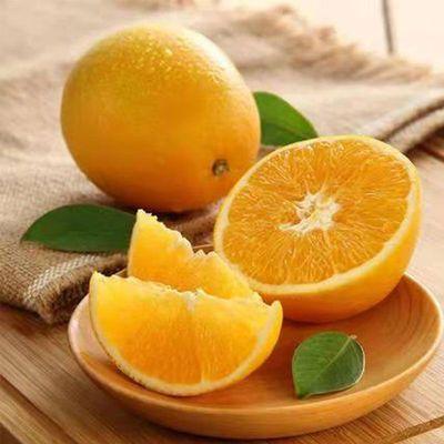【橙中之皇】湖北秭归春橙伦晚脐橙子新鲜现摘现发应季水果甜橙