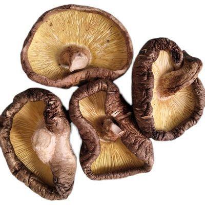 71871/干香菇批发大片香菇干货剪脚无腿厚片香菇农家特产蘑菇肉厚椴木菇