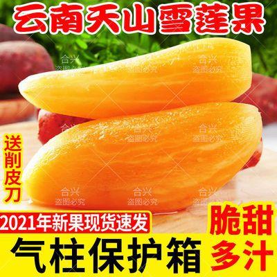 现货云南天山雪莲果新鲜水果整箱当季红泥黄心特级雪连果包邮