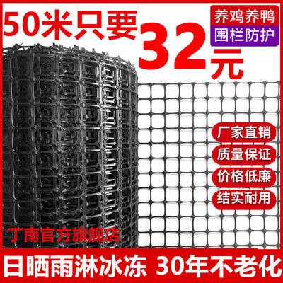 57823/加厚塑料网格围栏网鸡鸭鹅养殖漏粪网户外果园玉米圈地隔离防护网