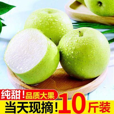皇冠梨现货3/5/10斤水果梨子新鲜当季整箱包邮翠玉青梨非砀山酥梨