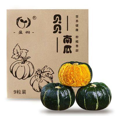 76007/【盈羽】贝贝南瓜板栗味正宗惠和一号进口软糯辅食9粒装高端礼盒