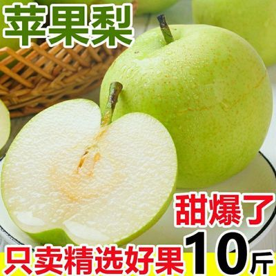 安徽皇冠梨10斤包郵整箱新鮮水果梨子5斤當季雪梨碭山梨酥梨批發
