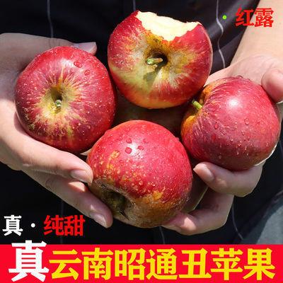 云南特产昭通丑苹果水果冰糖心新鲜脆甜大果红富士当季整箱包邮